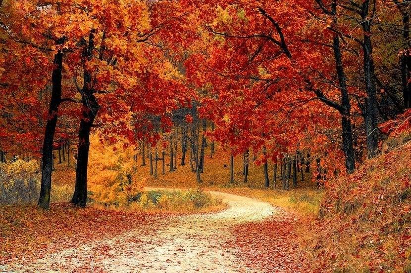 Danas stiže jesen, toplo do vikenda