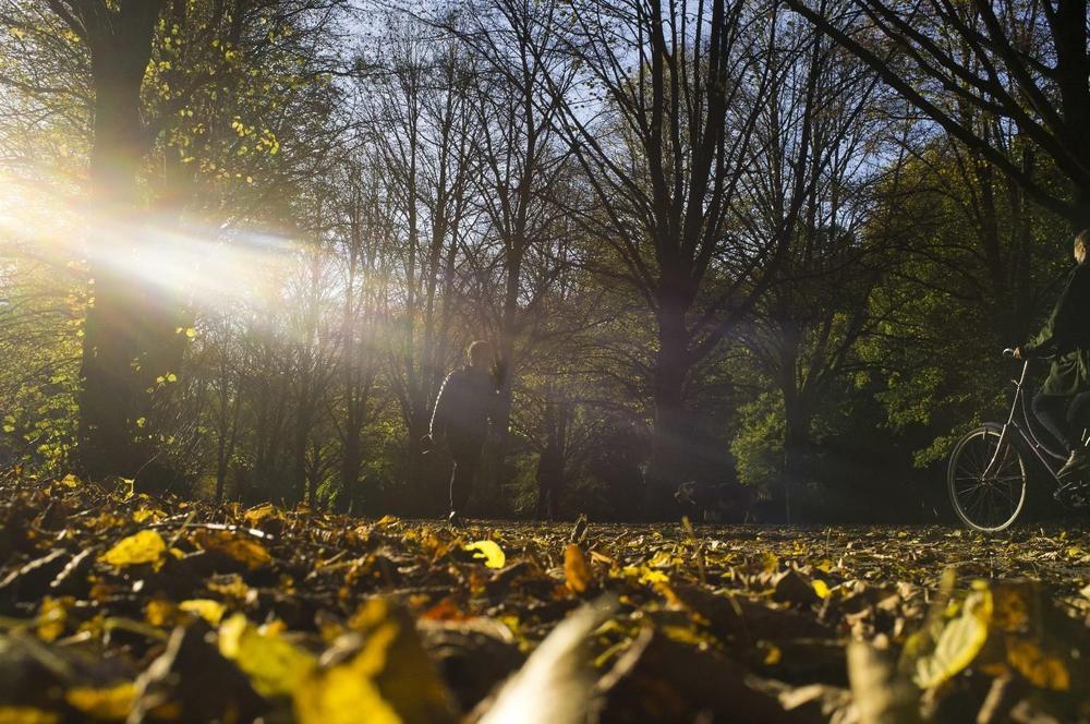 Danas sunčan i topao jesenji dan, od petka svežije