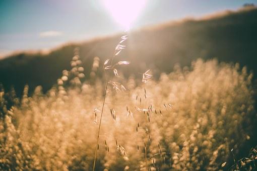 Vreme: Do srede sunčano i malo toplije