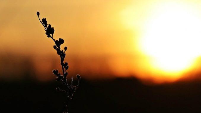 RHMZ: Sutra sunčano i toplo