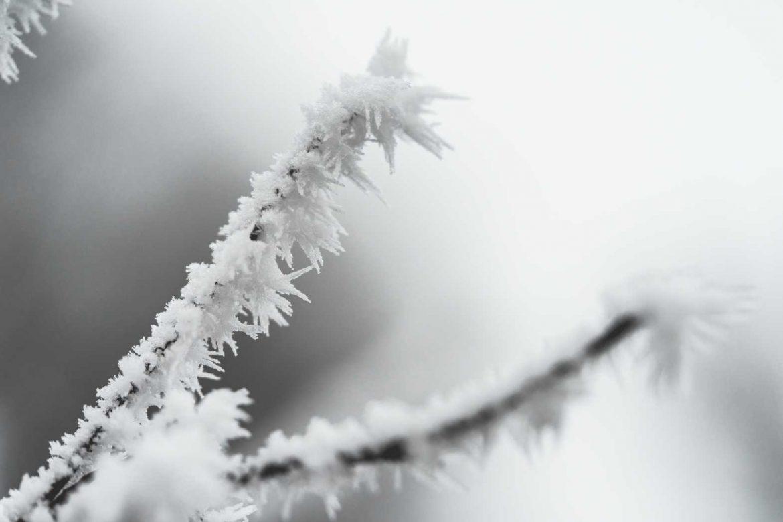 Vreme: Magla i mraz