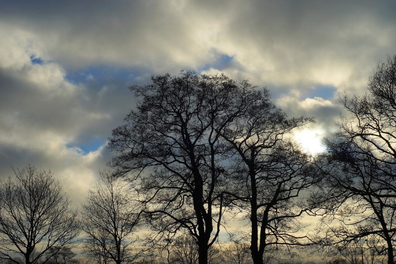Vreme: Suvo i oblačno