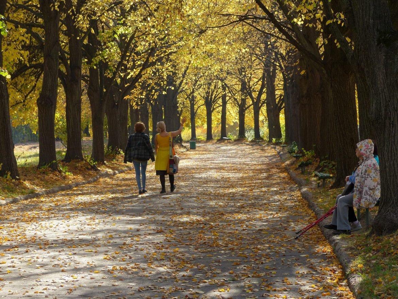Vreme: U Srbiji danas pretežno oblačno, vetrovito i malo toplije vreme