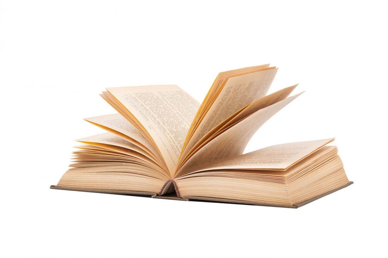 Za nagradu NIN pristiglo 212 romana
