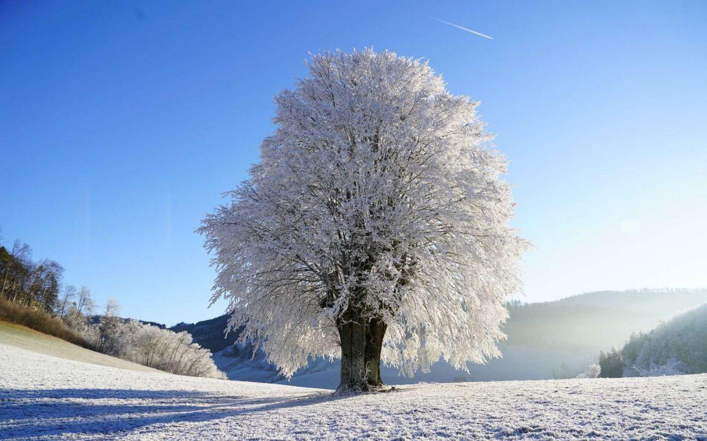 Sutra kalendarski počinje zima