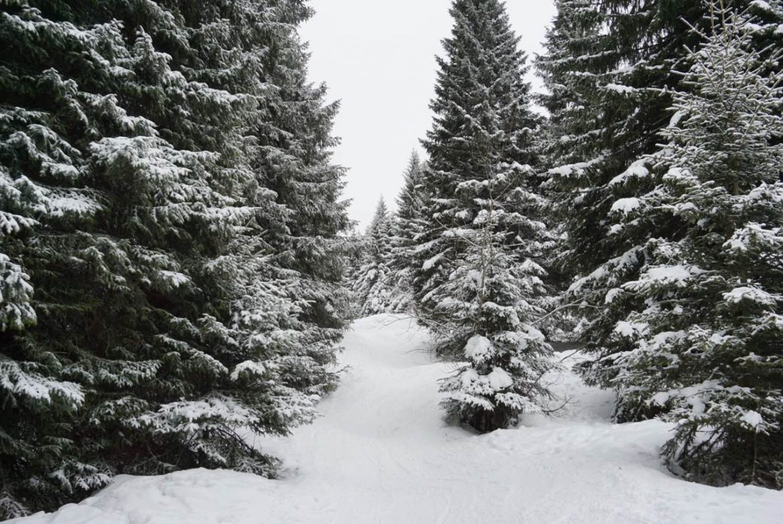 Upozorenje RHMZ: U nedelju cela zemlja pod snegom