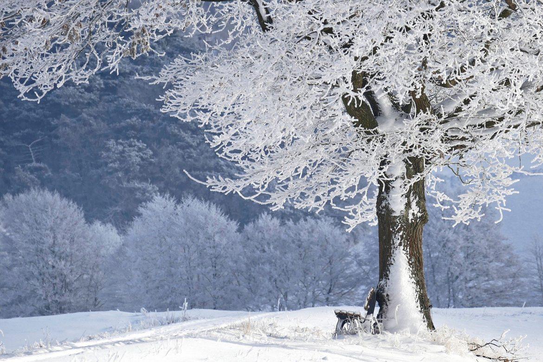 U Srbiji danas umereno oblačno i hladno, ponegde sa slabim snegom