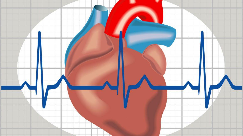 Šekler: Jedan od organa koji trpe od korone je i srčani mišić