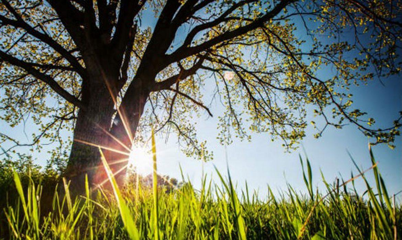 U Srbiji danas sunčano i toplo, temperatura do 28 stepeni