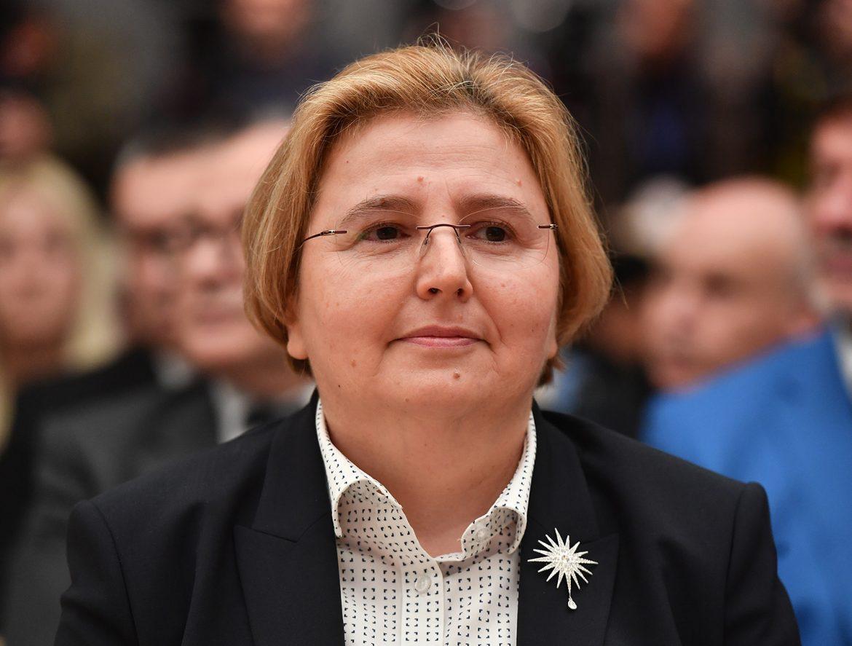 Skupštinski odbor podržao kandidaturu Zagorke Dolovac