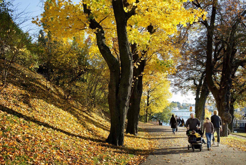 Todorović: Prava jesen dolazi krajem oktobra
