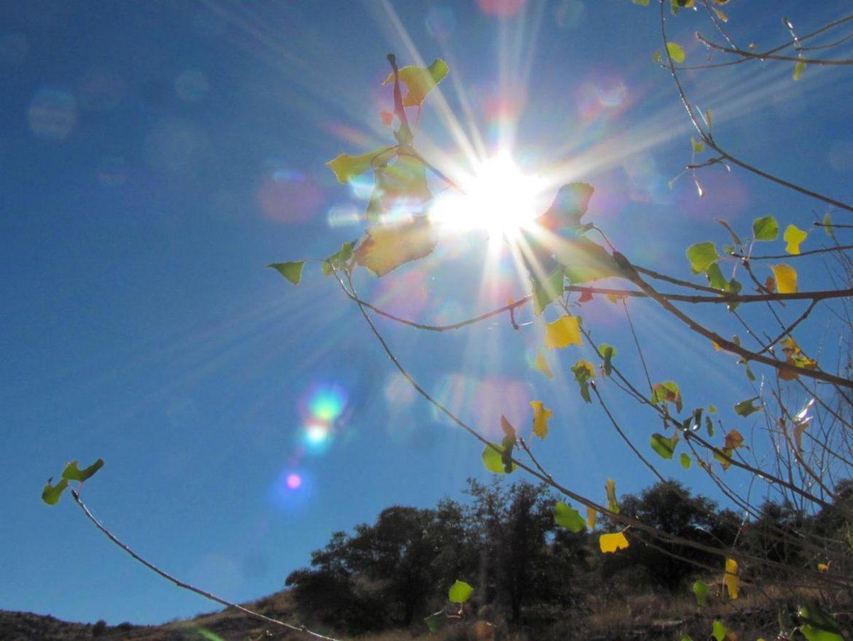 Danas sunčano i toplo, temperatura do 27 stepeni