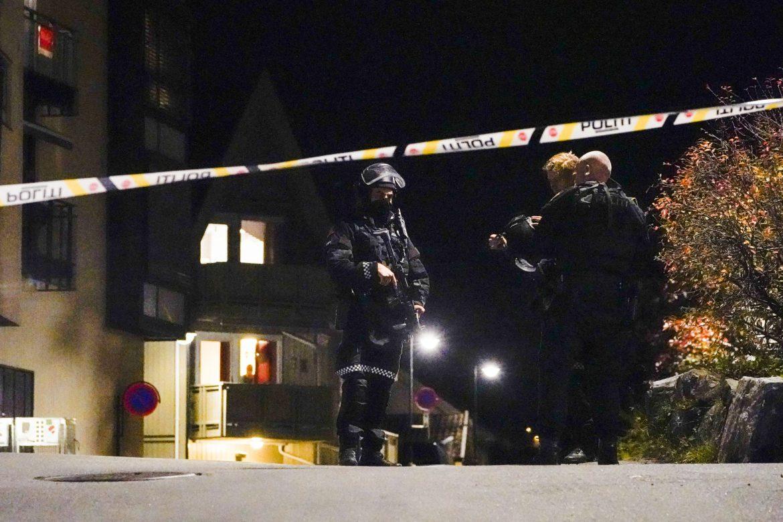 Norveška: Posle napada lukom i strelom uhapšen Danac